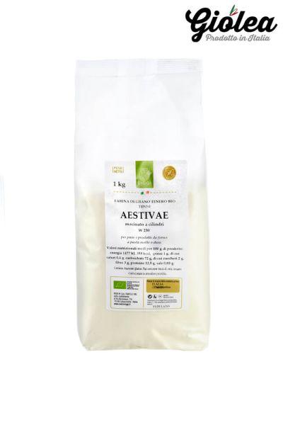 Bio Weichweizenmehl aus Italien Aestivae - Molini Riggi 1 x 1 Kg